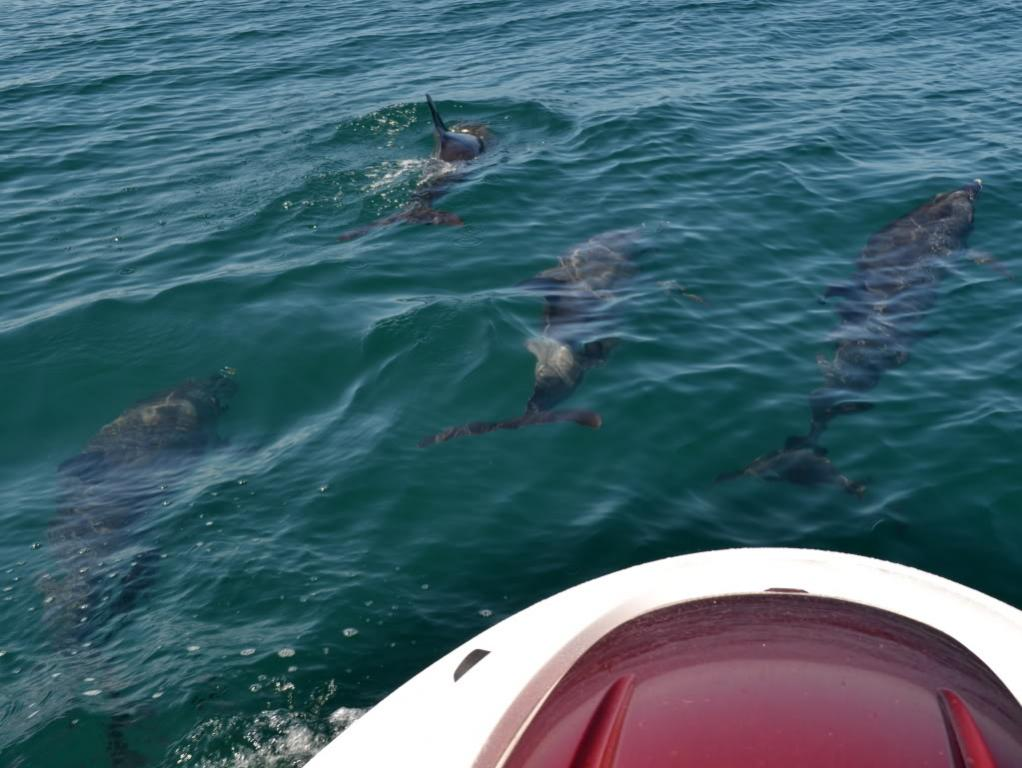 4 jet skis fishing 30 miles offshore oregon inlet nc for Jetty fishing oregon